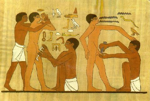 Adult circumcision. Wall painting from Ankhmahor, Sakkara.
